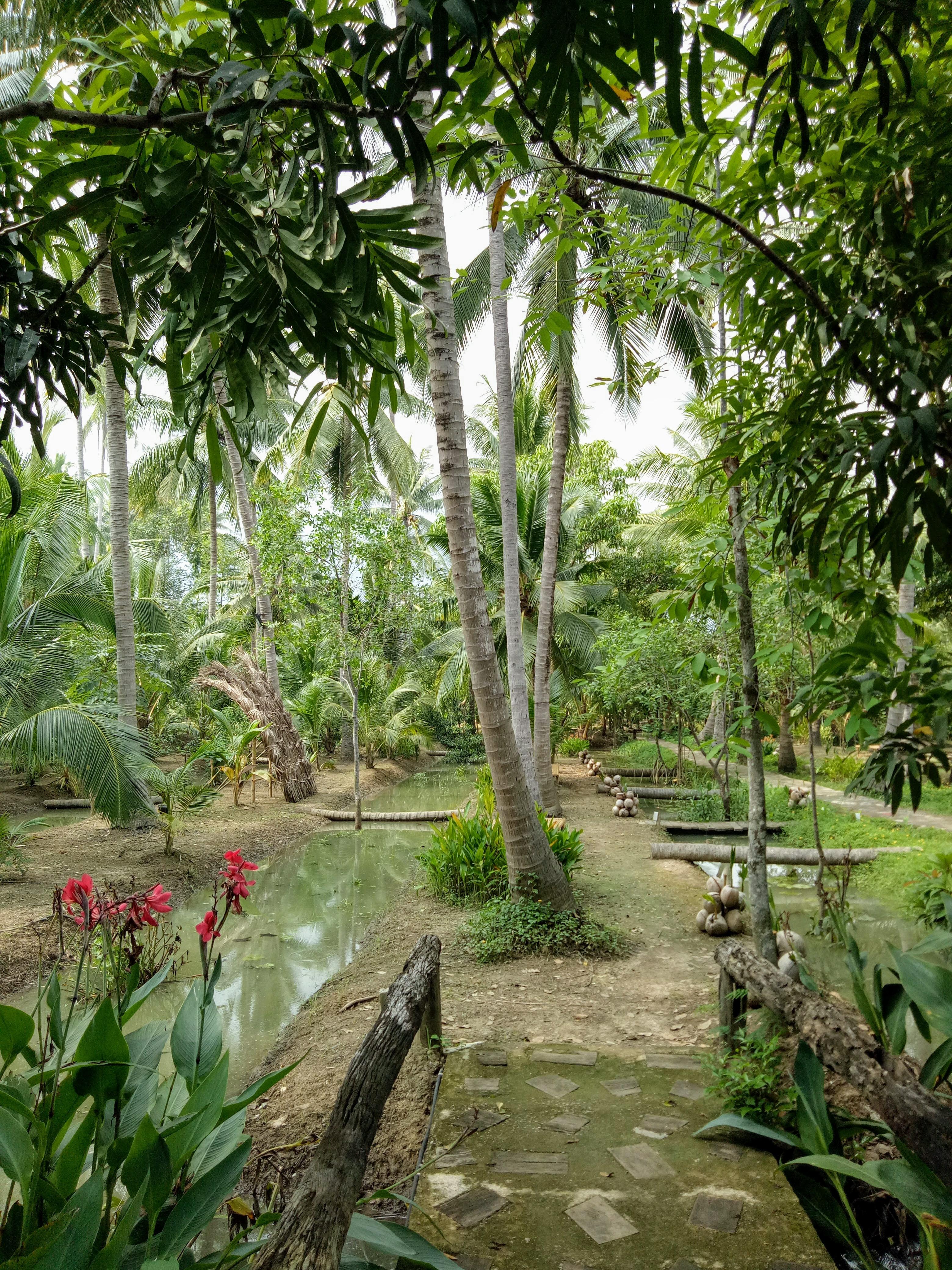 Amphhawa Chaipattananurak Conservation Project