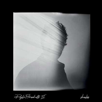Doyle Bramhall II - Shades cover