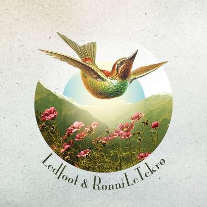 Ledfoot & Ronni Le Tekrø - A Death Divine cover