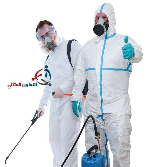 شركة مكافحة الفئران بالبحرين