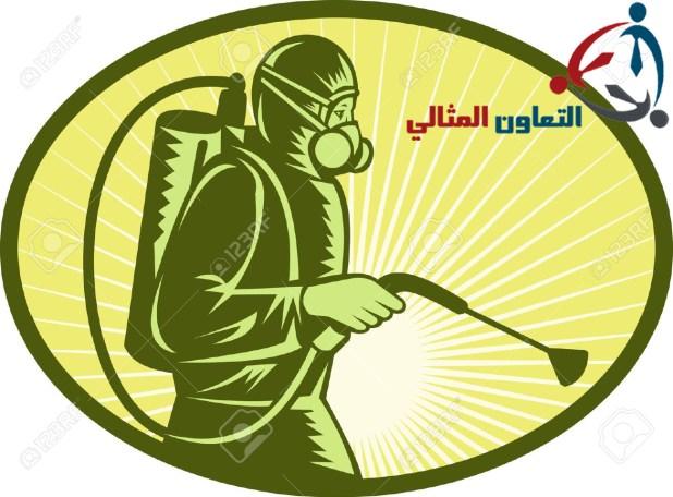 شركة مكافحة حشرات بالبحرين