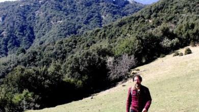 Photo of L'Aspromonte: terra di poeti e utopie