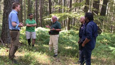 Photo of Dottori forestali tedeschi e austriaci visitano il Parco della Sila