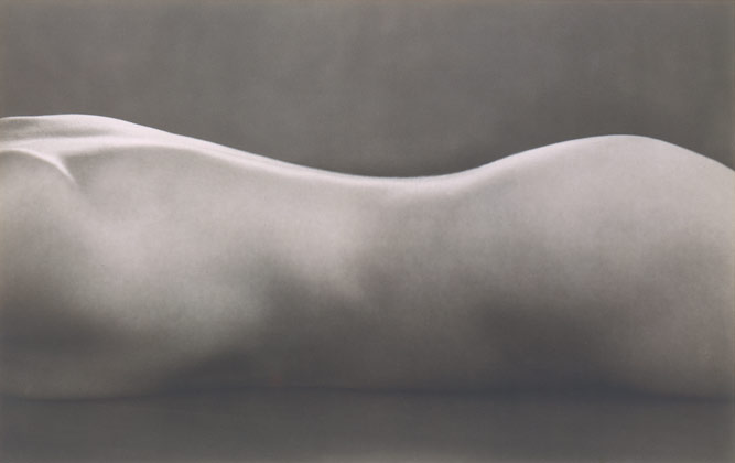 Image result for Edward Weston: Nude: 1925