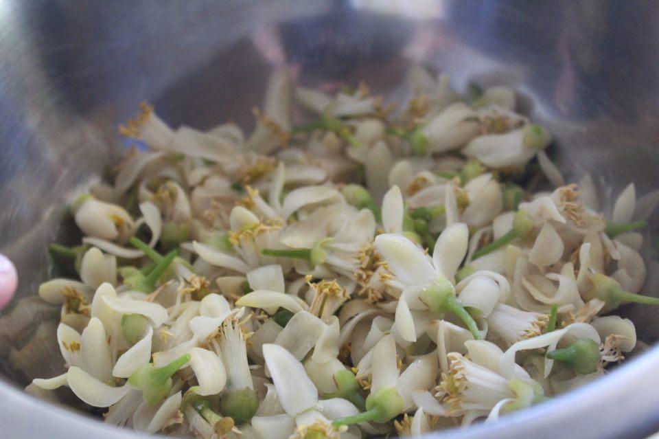 Γλυκό Κουταλιού από Άνθη Εσπεριδοειδών - τα άνθη