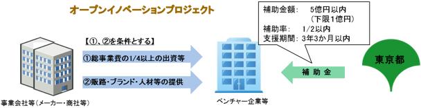 事業の流れの概要図