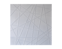 WHITE WEB – 40″X40″- GALLERY WRAPPED