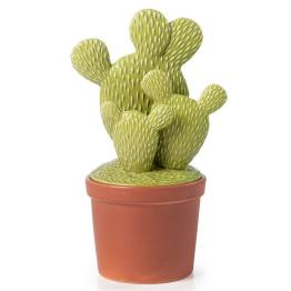 Cactus Terracotta Decor Canister Large – Prickly Pear