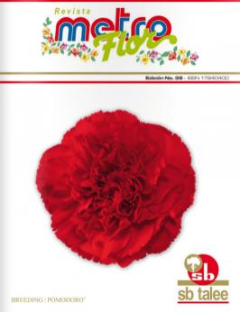 edicion38-2010