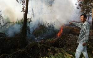 Kebakaran lahan disalah satu kawasan di Kalbar