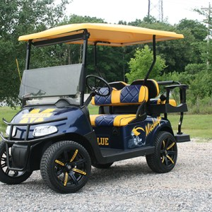 Michigan Lowered E-Z-Go RXV Cart - Blue Gold Featured view EZG-105