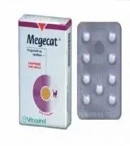 antikoncepce pro kočky