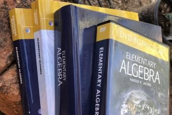 Jacobs Elementary Algebra Master Books