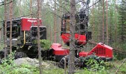 3. Paalain prosessoi syötettyä puutaakkaa ja samalla kuljettaja hakkaa ja syöttää lisää puuta paalaimeen.