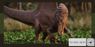 Instinction um novo Dino Crisis?