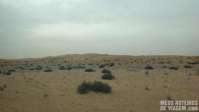 Vegetação do deserto dos Emirados Árabes