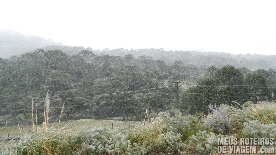 Neve em Vacas Gordas - Urubici