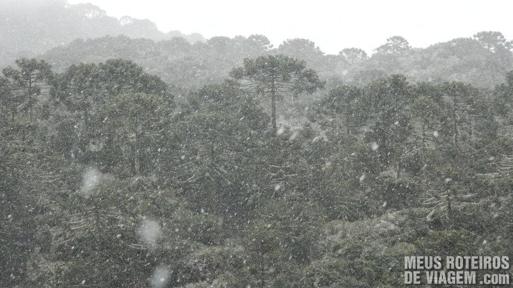 Neve em Vacas Gordas - Urubici (1475m de altitude)