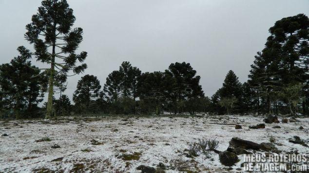 Neve em São Joaquim - Serra Catarinense