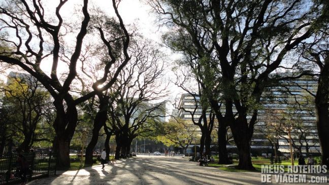 Jacarandás na Plaza San Martín - Buenos Aires, Argentina