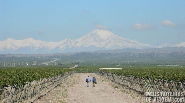 Vinhedos da Pulenta Estate com vista para o vulcão Tupungato - Mendoza, Argentina