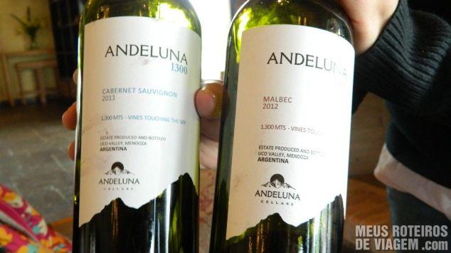 Vinhos tintos da degustação - Andeluna Mendoza