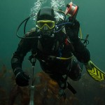 Scuba Diving in Ireland