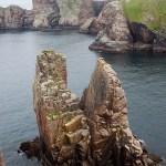Diving in Ireland