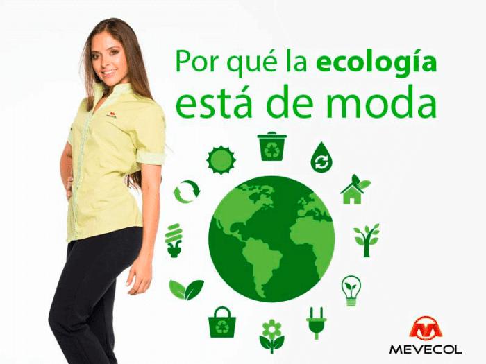 ¿Por qué la ecología está de moda?