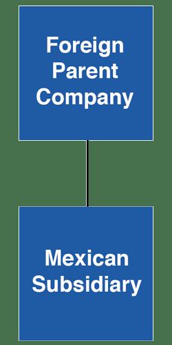Basic subsidiary structure