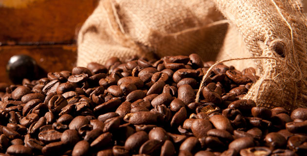 https://i1.wp.com/www.mexicodesconocido.com.mx/assets/images/notas_2012/mayo_2012/destinos-cafe-mexico-may12.jpg