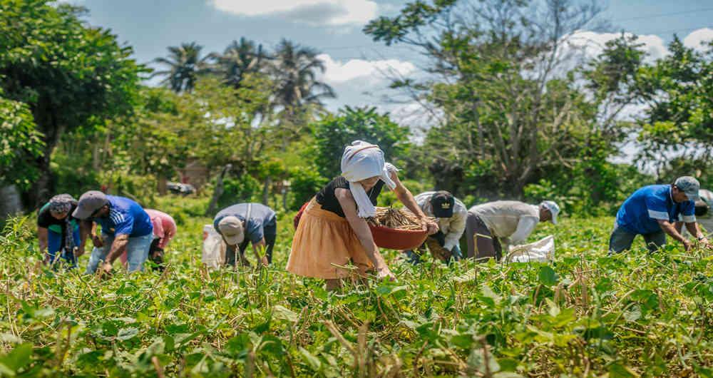 Mantiene récord histórico balanza agroalimentaria de México
