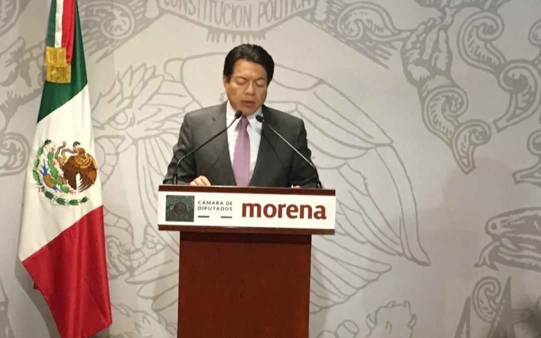 A finales de enero, definirá Morena su agenda legislativa: Delgado