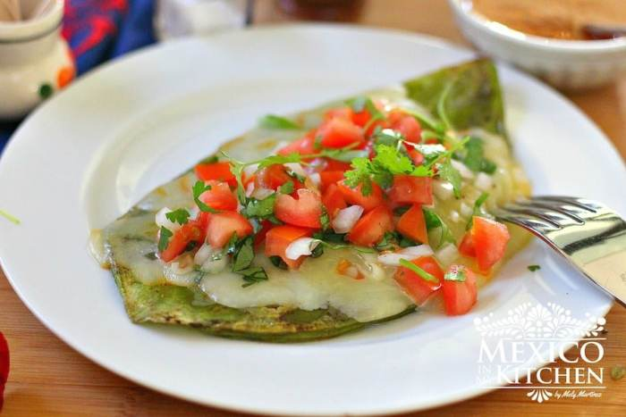 grilled cactus - nopales with cheese