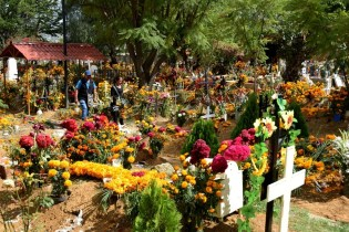 Flowers, Flowers & more Flowers adorn the grave sites