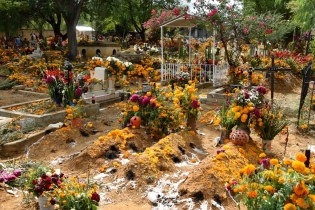 Day of the Dead flowers at a rural cemetery