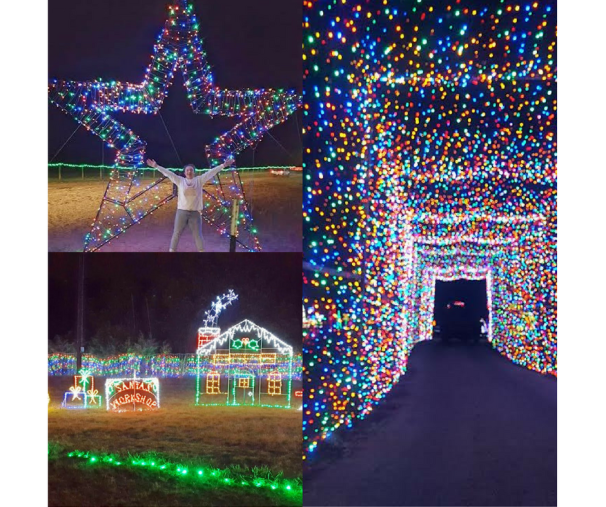 Holiday Fun at the Christmas Light Fest!