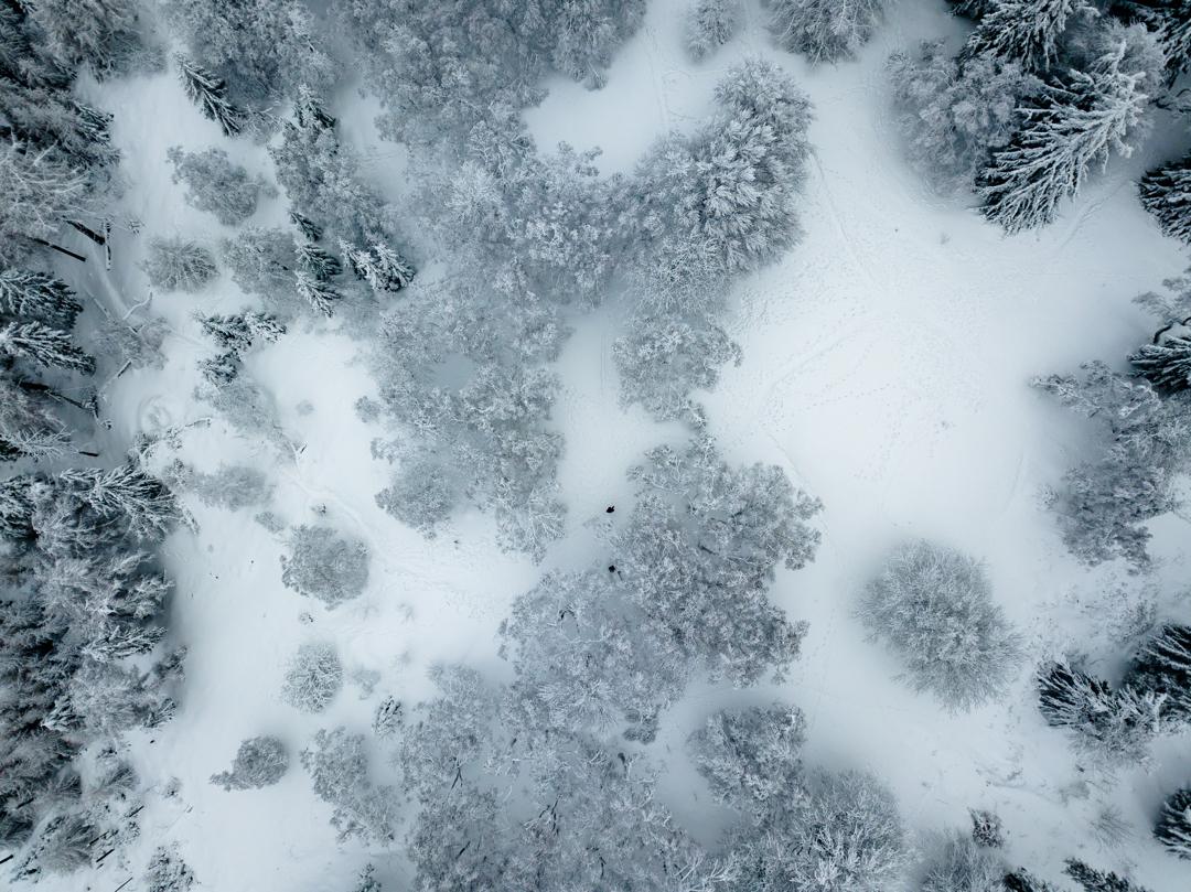 Alleine im Neuschnee auf dem Altkönig @mavic_pro