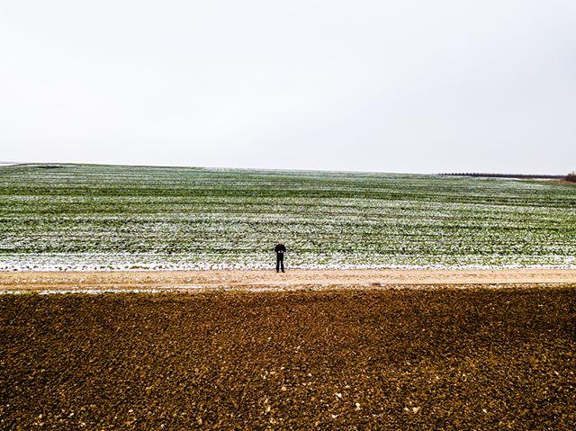 Alleine auf dem Feld