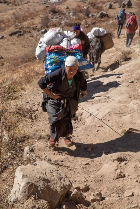 Nepal trekking (87)