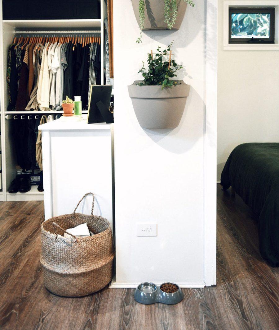 Tiny Home Plants