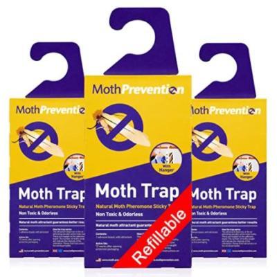 Hanging Moth Traps