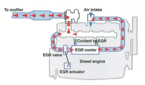 EGR valve blanking service