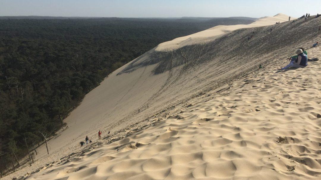 Dune pilat (1)