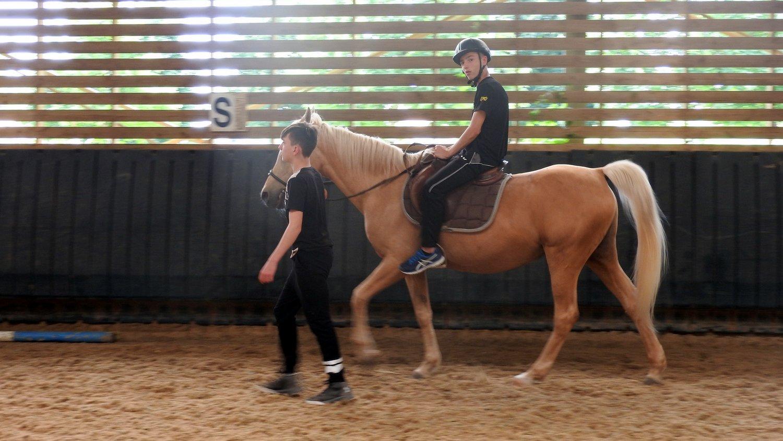 centre equestre 93