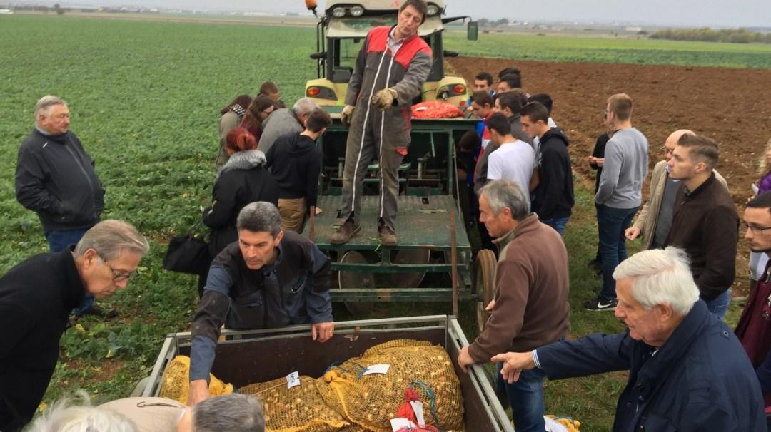 Tulipes contre le Cancer Plantation CFA MFR PuySec (39)