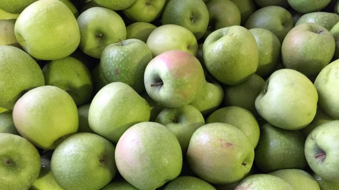 jus de pommes pour Voyage d'Etudes 201 2018 CFA MFR Puy-Sec (4)