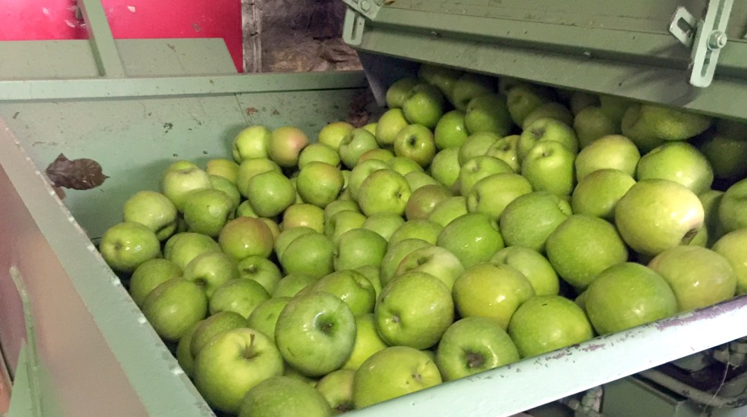 Jus de pommes 2017