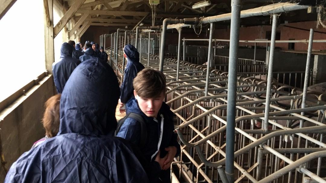 GAEC Poussignys Porcs Mars 2018 CFA MFR Puy-Sec (10)