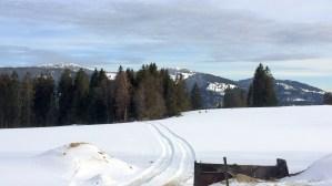 Jeudi AM VE Suisse TA CFA MFR Puy-Sec Mars 2018 Famille Wieland